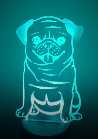 Pug LED LIGHTS